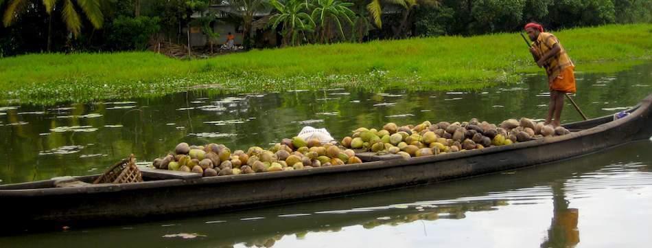 coconutboat__1439453897_42.99.164.49__1439456194_42.99.164.49