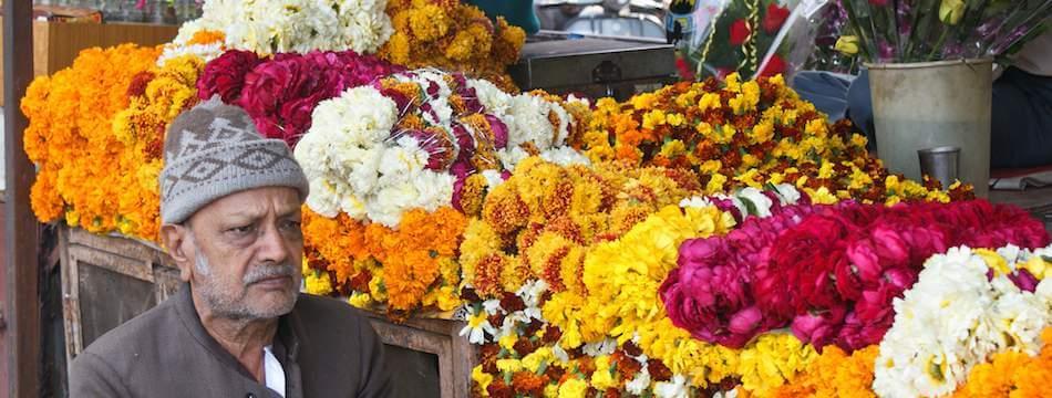 flower-2__1439454781_42.99.164.49