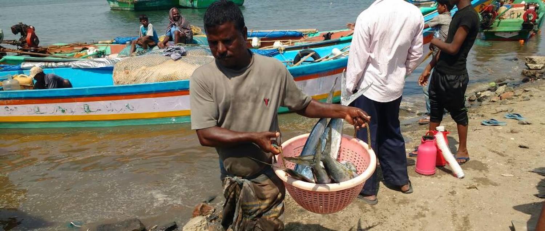 Fish market, Leather market, Shopping tour chennai